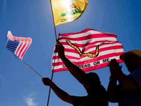 HARVARD PROF: TEA PARTY NOT GOING ANYWHERE, MORE LIKELY TO WIN