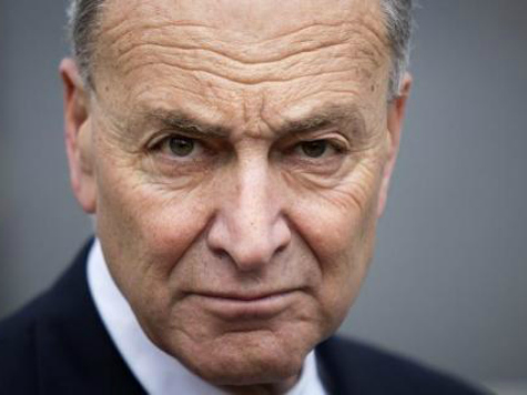 SCHUMER: IMMIGRATION STALLED BY TEA PARTY