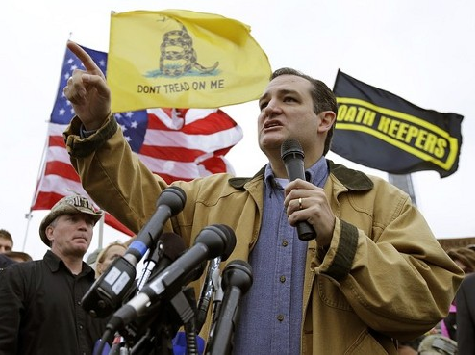 CRUZ: 'WE'RE GOING TO REPEAL EVERY SINGLE WORD OF OBAMACARE'!