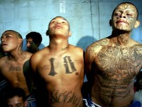 """BORDER PATROL: CARTELS USING DE FACTO AMNESTY TO SMUGGLE """"WHATEVER THEY WANT"""" INTO U.S."""