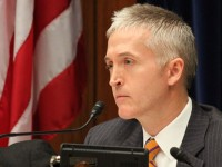 "Trey Gowdy Takes on Obamacare Architect For Lying to ""Stupid"" Americans!"