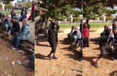 SICK: This Black Thug Viciously Attacks Older White Woman At Park… Liberals And Media SILENT