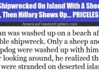Man Shipwrecked On Deserted Island With A Sheep And A Dog, Then Hillary Shows Up… PRICELESS!