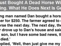 Guy Just Bought A Dead Horse Without Knowing… What He Does Next Is Genius!