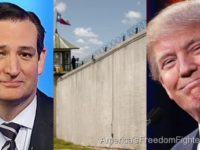 Ted Cruz Just Proposed GENIUS Plan To Fund Border Wall NO ONE Has Thought Of- It's Turning Heads