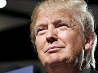 U.S. Republican presidential candidate Donald Trump holds a campaign event in Phoenix, Arizona July 11, 2015. REUTERS/Nancy Wiechec - RTX1K1EA