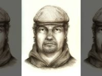 A composite sketch of a suspect in the murders of two teenage girls in Indiana.  (Indiana State Police)
