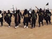 Islamic State's militants. File photo