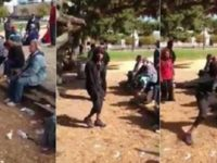 SICK: This Black Thug Viciously Attacks Older White Woman At Park… Liberals SILENT (Video)