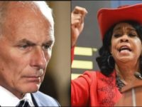 BOOM! Gen. Kelly Just DESTROYED Maxine Waters In a Cowboy Hat [Video]