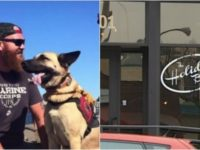 Restaurant In This State Wishes They NEVER Kicked Out Disabled Veteran Because Of His Dog… HUGE MISTAKE