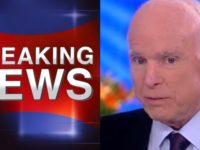 Globalist Traitor John McCain Makes Disgusting Statement Right As FISA Memo Released