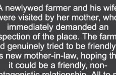 Newlywed Farmer Gets A Visit From His Tough Mother-In-Law, But No One Expected THIS To Happen!