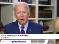 """Joe Biden: The """"Undocumented"""" Should Have """"Access to What Everybody Else Has Access to"""""""