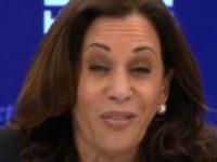 Here She Goes AGAIN- Kamala Harris Tells MSNBC Viewers To Riot And BURN Down America