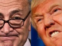 ALERT: We Just Found Out Chuck Schumer's Secret Plan For Trump- It WON'T Work
