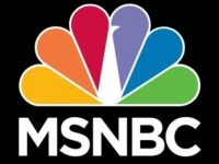 MSNBC Is Calling For EVERY 1 In 10 Americans INCLUDING Military And LEO To Be Investigated For THIS Reason