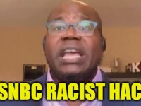 MSNBC Racist Black Hack Compares Conservatives To THIS- He Should Be In JAIL