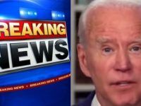 Biden Regime Teams Up With The MLB To Punish Trump Supporters- It's Time To BOYCOTT NOW
