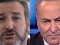 BREAKING: Ted Cruz Just SHREDDED Dirtbag Chuck Schumer With EPIC SMACKDOWN- Exposes WHO He's Terrified Of