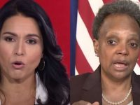 BREAKING NEWS Out Of Chicago- Tulsi Gabbard Just Put Racist A F Mayor Lightfoot In Her PLACE