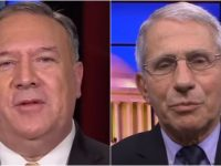 WATCH As Mike Pompeo Rips NIH And Fraudster Fauci To PIECES- It's BRUTAL And SPOT ON
