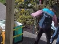 ALERT: Watch Shocking Graphic Video Of Amazon Driver Beating The HELL Out Of Elderly Woman Because She's WHITE- BOYCOTT AMAZON!!