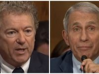 WATCH As Fauci Becomes Totally UNHINGED When Rand Paul Totally DESTROYS Him In NEW Senate Hearing