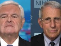 BREAKING News From Newt Gingrich- He Drops A HUGE Fauci Bombshell!!!!