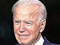 *MORON ALERT!* Look Who White House Blames For Biden's BRUTALLY Low Approval Numbers- You CAN'T Make This Up!